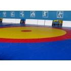 Борцовский ковёр 12х12х0,04м,Трёхцветный в комплекте с матами